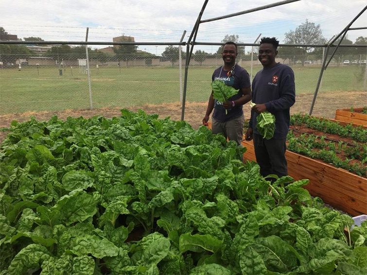 Students play leading role to ensure food security