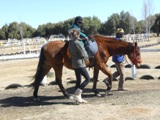 Description: Therapeutic horse-riding Tags: therapeutic horse-riding, differently abled, service learning, Equistria, Psychology