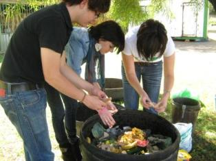 Description: Earthworm and food garden project at Free State Care in Action Tags: earthworms, food garden, Free State Care in Action, MEX354, service learning