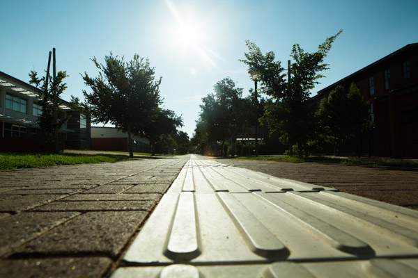 Walkway with tactile paving