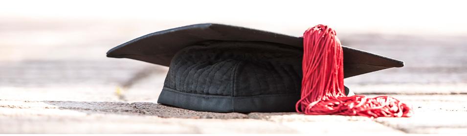 BlackBoard Login Spotlight