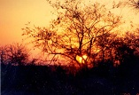 Description: INORG2009 Keywords: Photo, Sunset